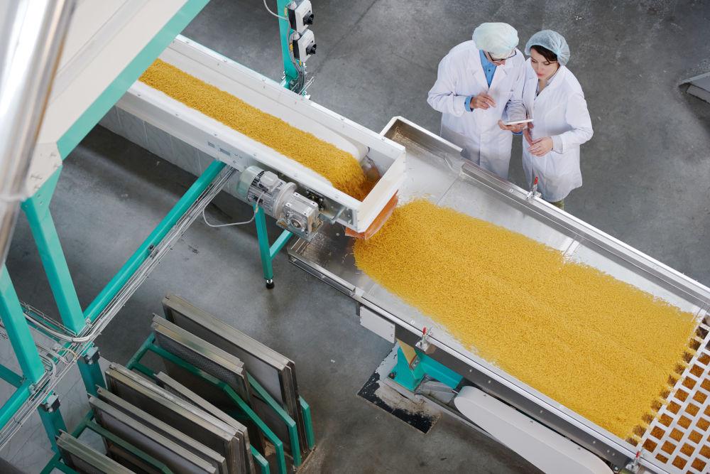 pasta noodle factory