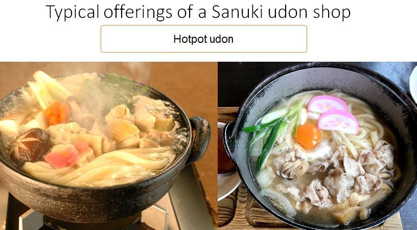 hot pot udon noodles