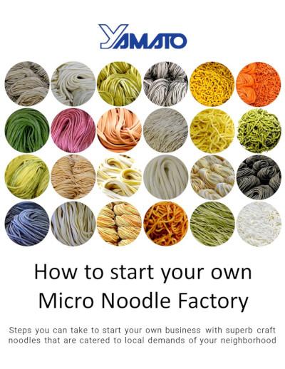 micro noodle factory ebook