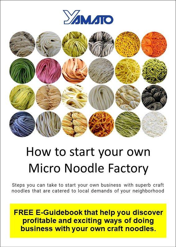 e-book micro noodle factory